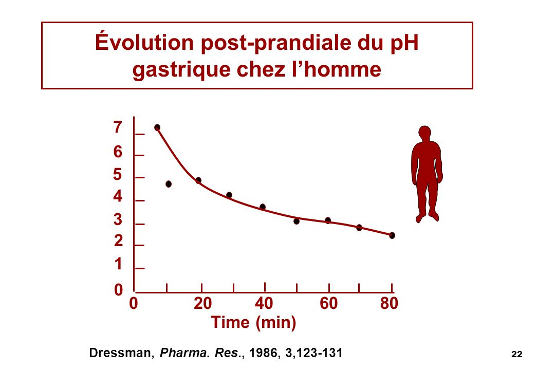Évolution post-prandiale du pH gastrique chez l'homme