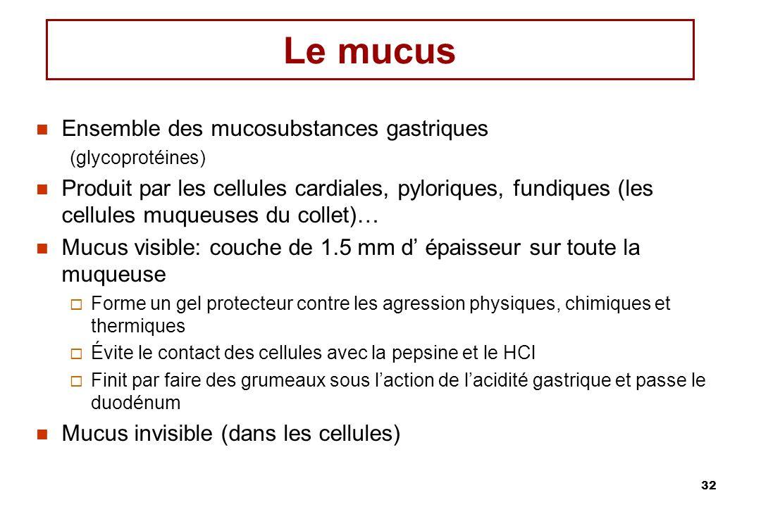 Le mucus Ensemble des mucosubstances gastriques