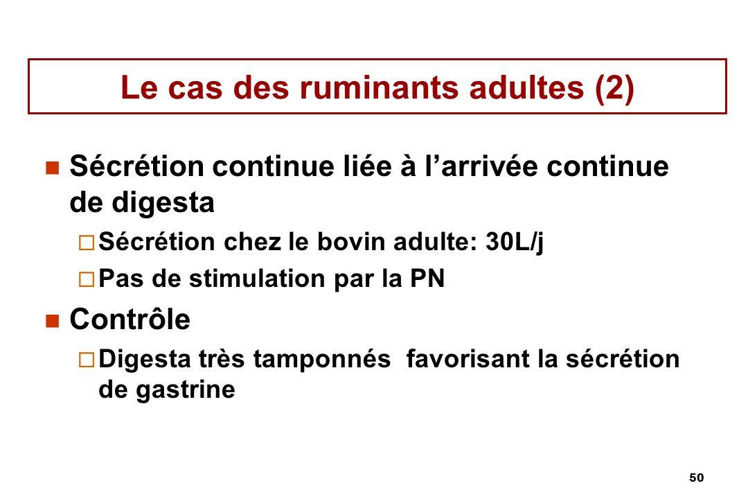 Le cas des ruminants adultes (2)