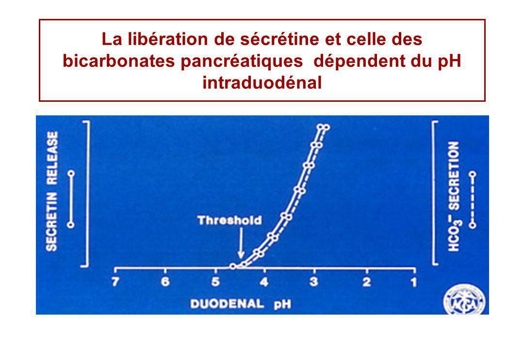 La libération de sécrétine et celle des bicarbonates pancréatiques dépendent du pH intraduodénal