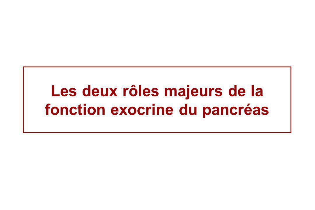 Les deux rôles majeurs de la fonction exocrine du pancréas