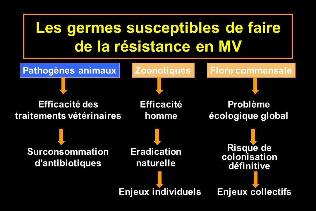 Les germes susceptibles de faire de la résistance en MV