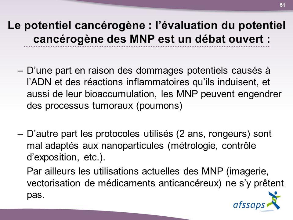 Le potentiel cancérogène : l'évaluation du potentiel cancérogène des MNP est un débat ouvert :