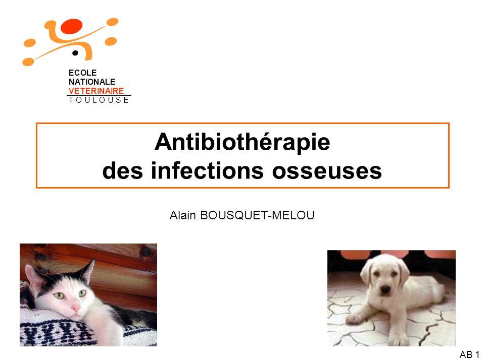 Antibiothérapie des infections osseuses