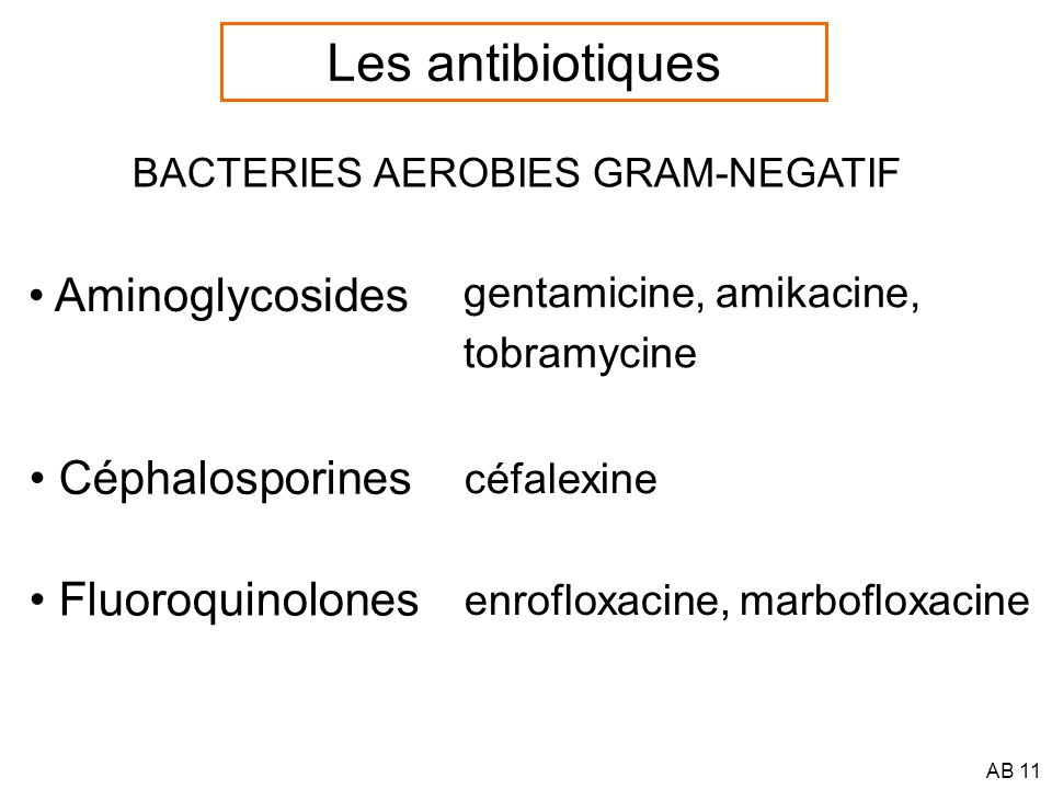 Les antibiotiques Aminoglycosides Céphalosporines Fluoroquinolones