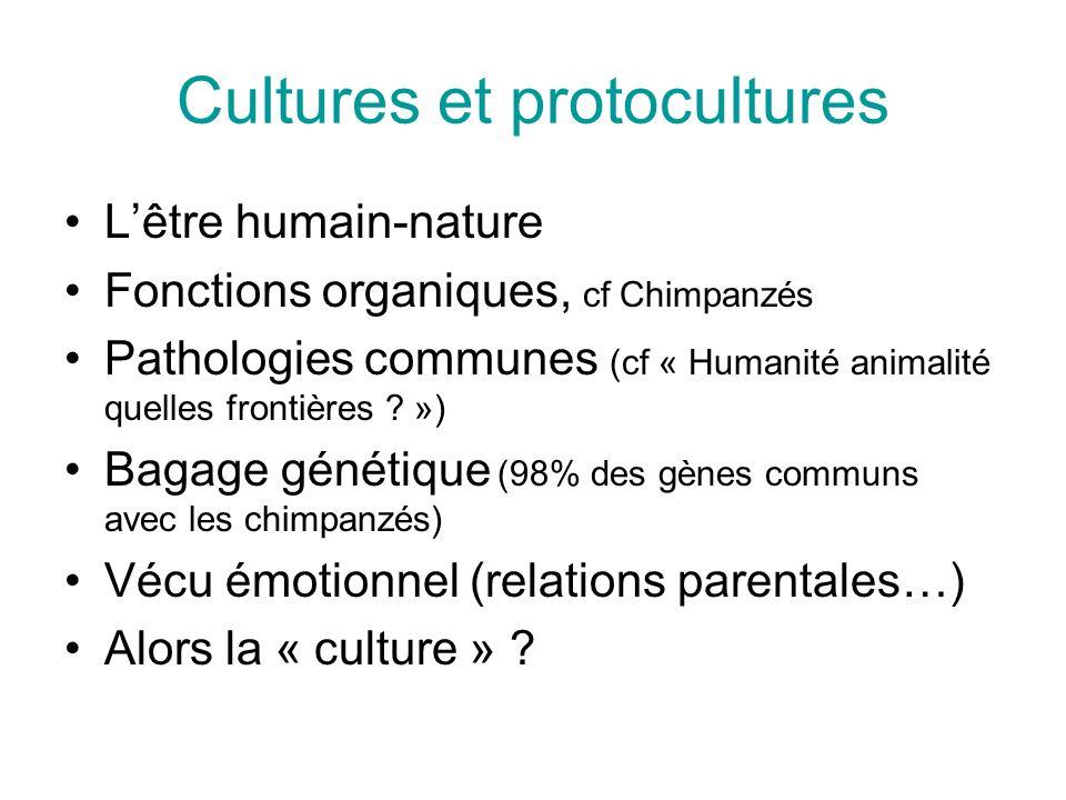 Cultures et protocultures