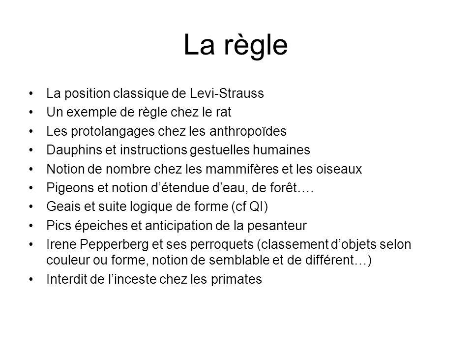 La règle La position classique de Levi-Strauss