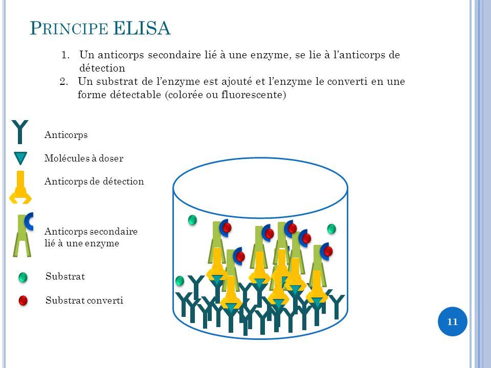 Principe ELISA Un anticorps secondaire lié à une enzyme, se lie à l'anticorps de détection.