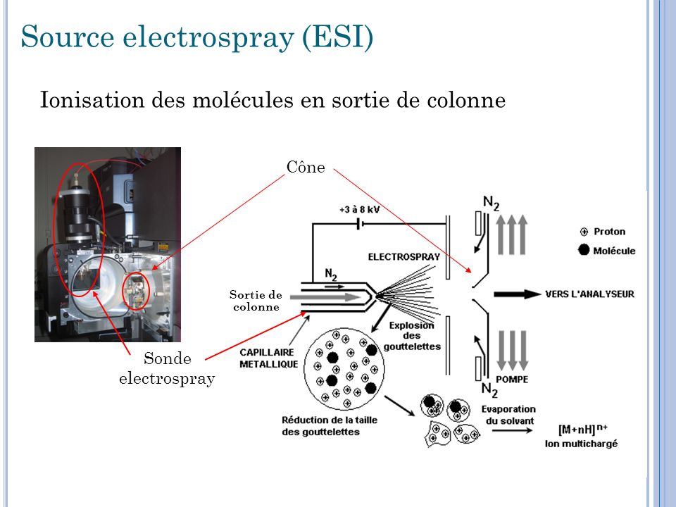 Source electrospray (ESI)