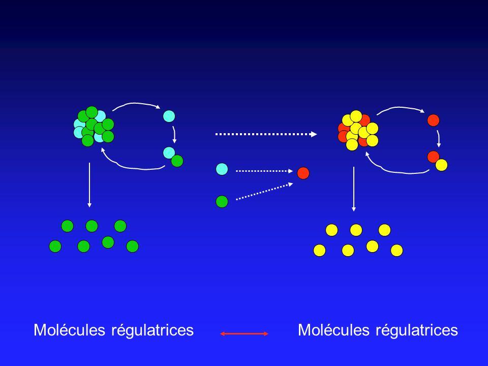 Molécules régulatrices