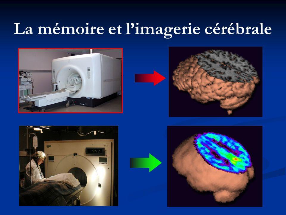 La mémoire et l'imagerie cérébrale