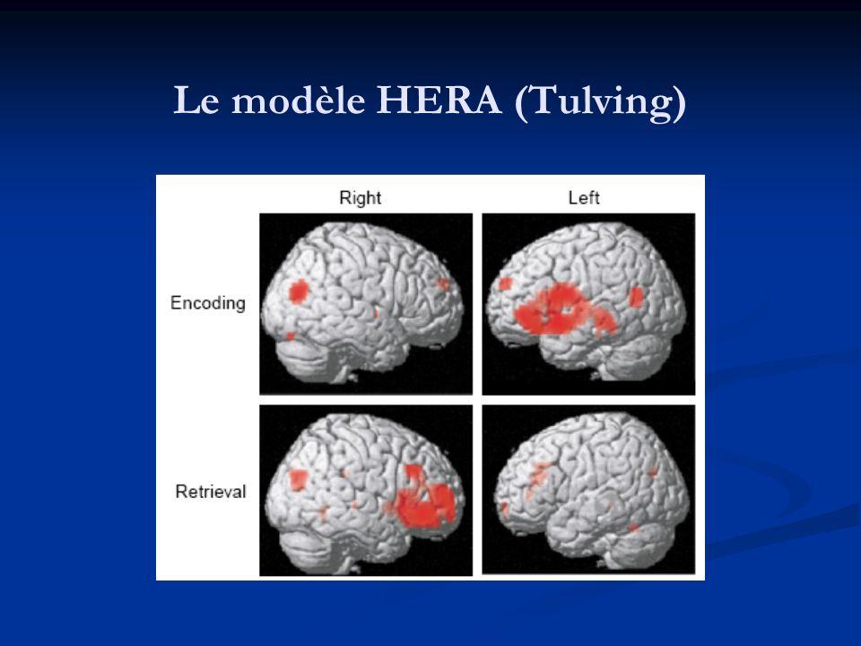 Le modèle HERA (Tulving)