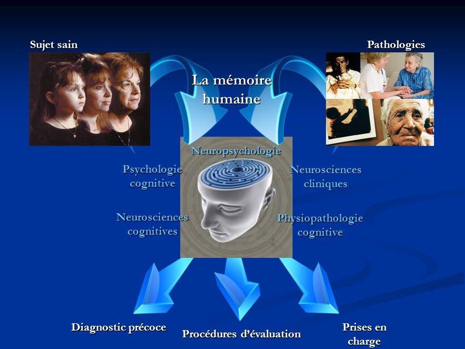 La mémoire humaine Sujet sain Pathologies Neuropsychologie
