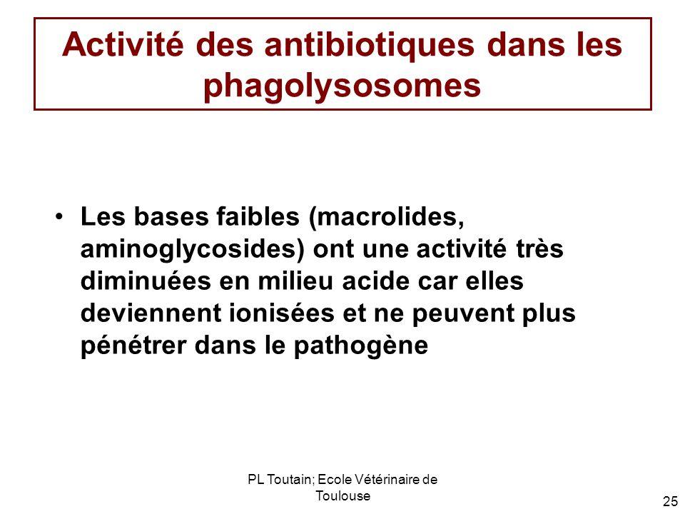 Activité des antibiotiques dans les phagolysosomes