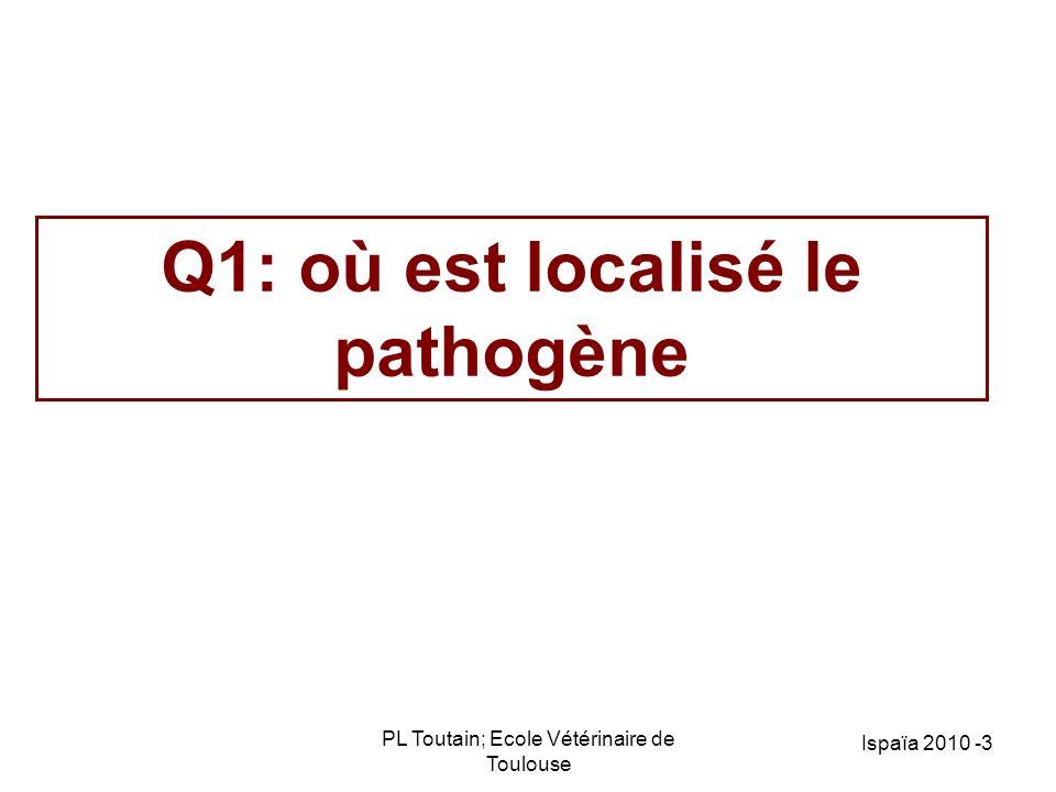 Q1: où est localisé le pathogène
