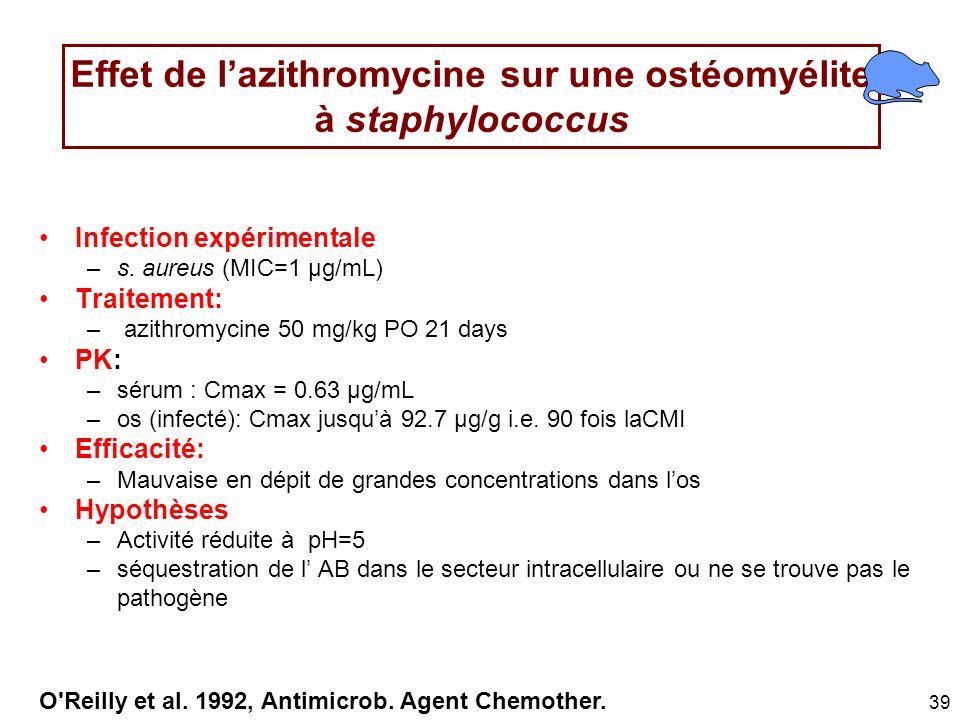 Effet de l'azithromycine sur une ostéomyélite à staphylococcus
