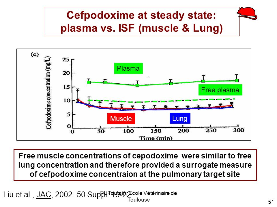 Cefpodoxime at steady state: plasma vs. ISF (muscle & Lung)