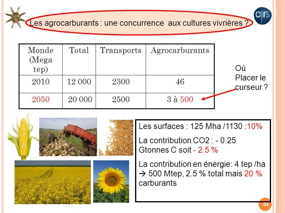 Les agrocarburants : une concurrence aux cultures vivrières