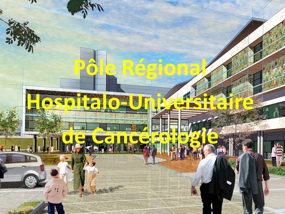 Hospitalo-Universitaire