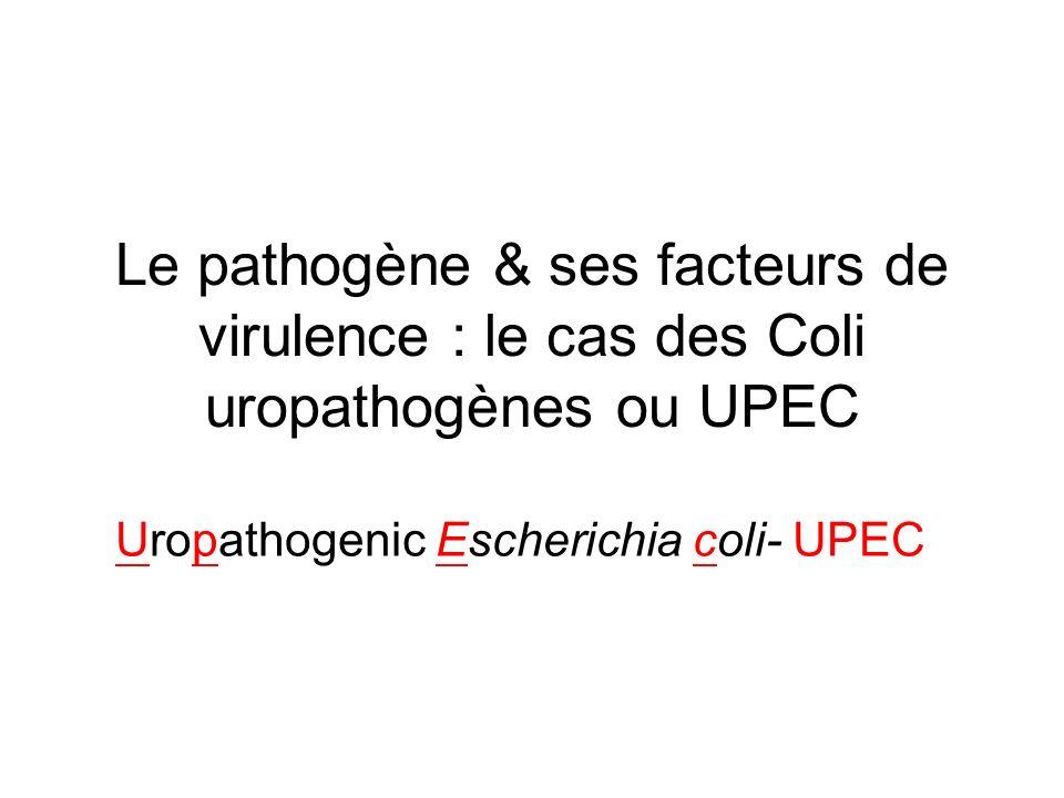 Le pathogène & ses facteurs de virulence : le cas des Coli uropathogènes ou UPEC