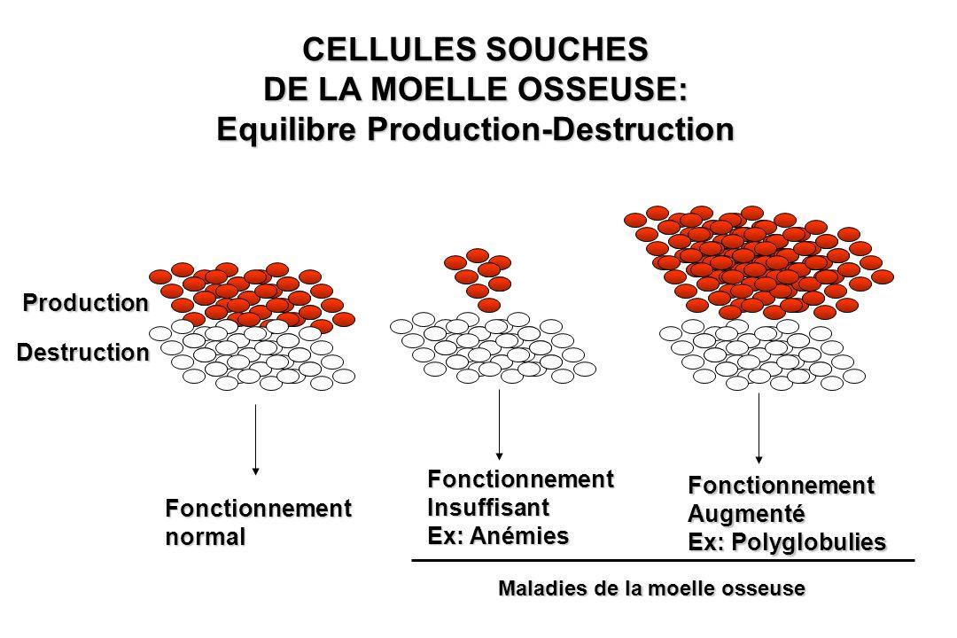 Equilibre Production-Destruction