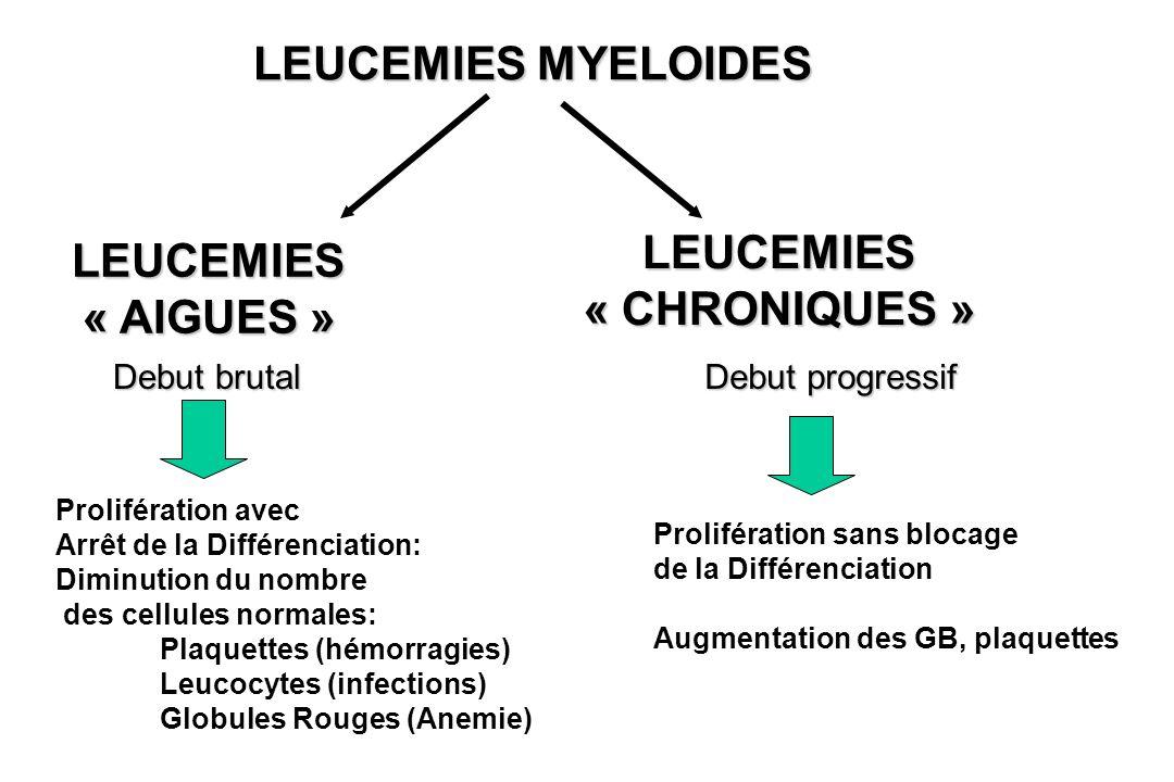 LEUCEMIES « CHRONIQUES »