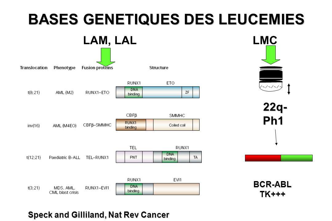 BASES GENETIQUES DES LEUCEMIES Speck and Gilliland, Nat Rev Cancer