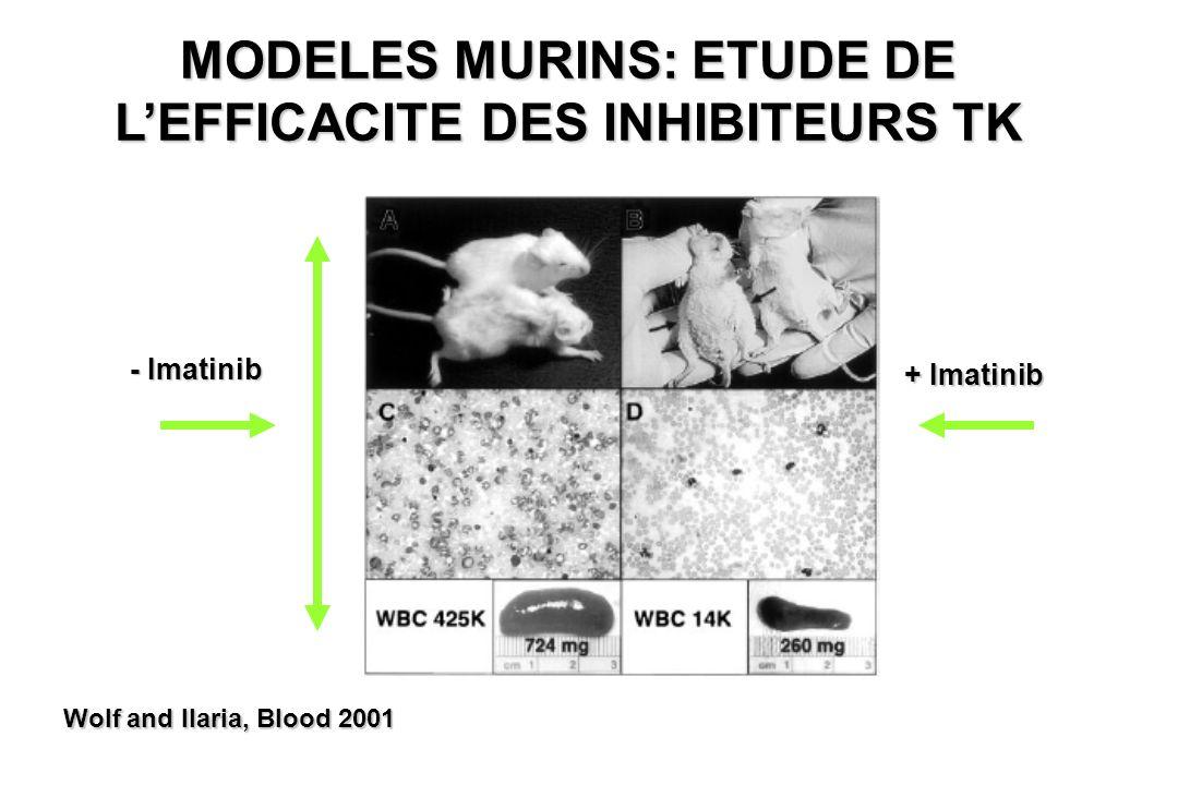 MODELES MURINS: ETUDE DE L'EFFICACITE DES INHIBITEURS TK