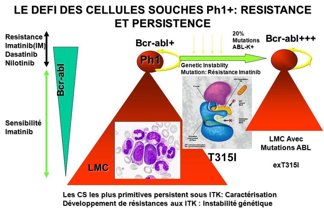 LE DEFI DES CELLULES SOUCHES Ph1+: RESISTANCE ET PERSISTENCE