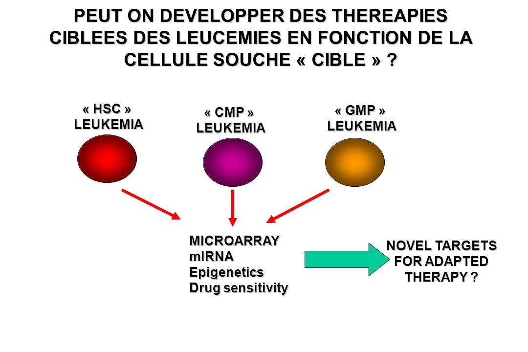 NOVEL TARGETS FOR ADAPTED THERAPY