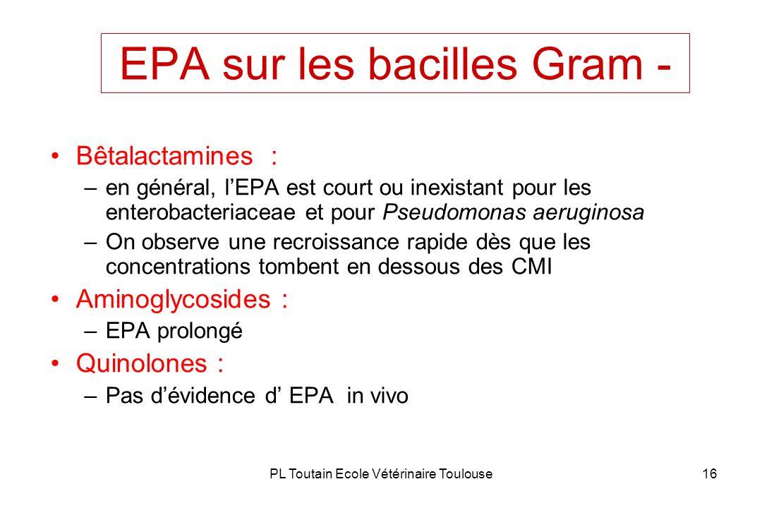 EPA sur les bacilles Gram -