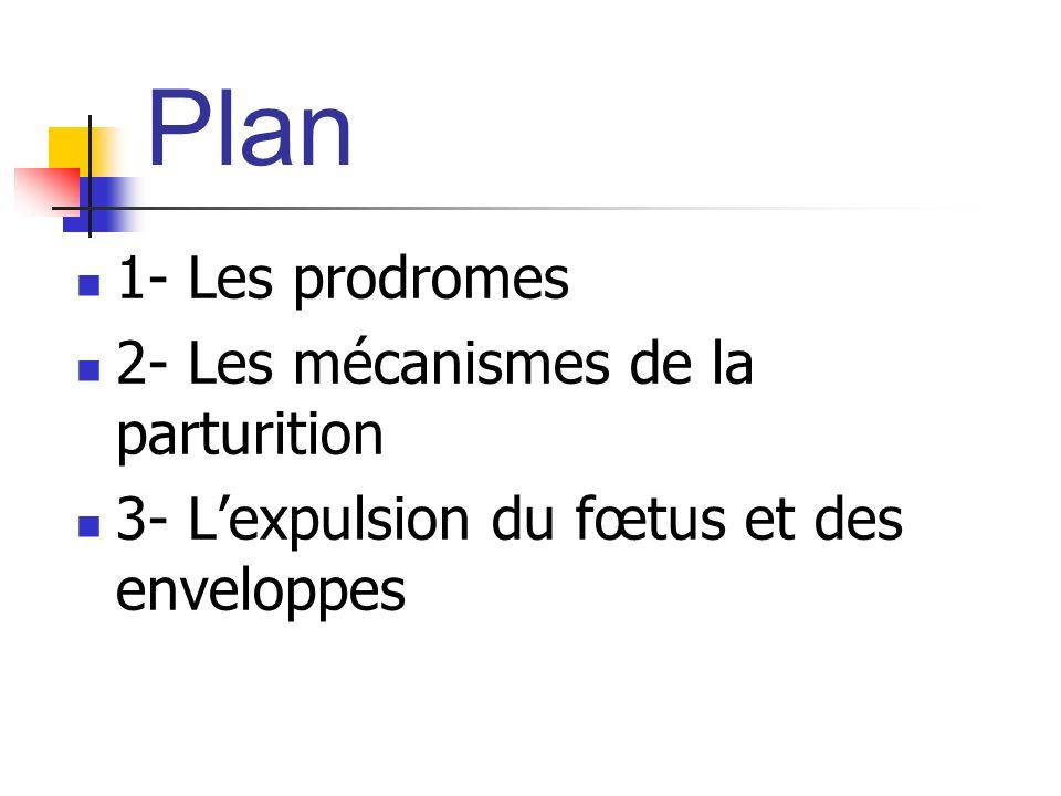Plan 1- Les prodromes 2- Les mécanismes de la parturition