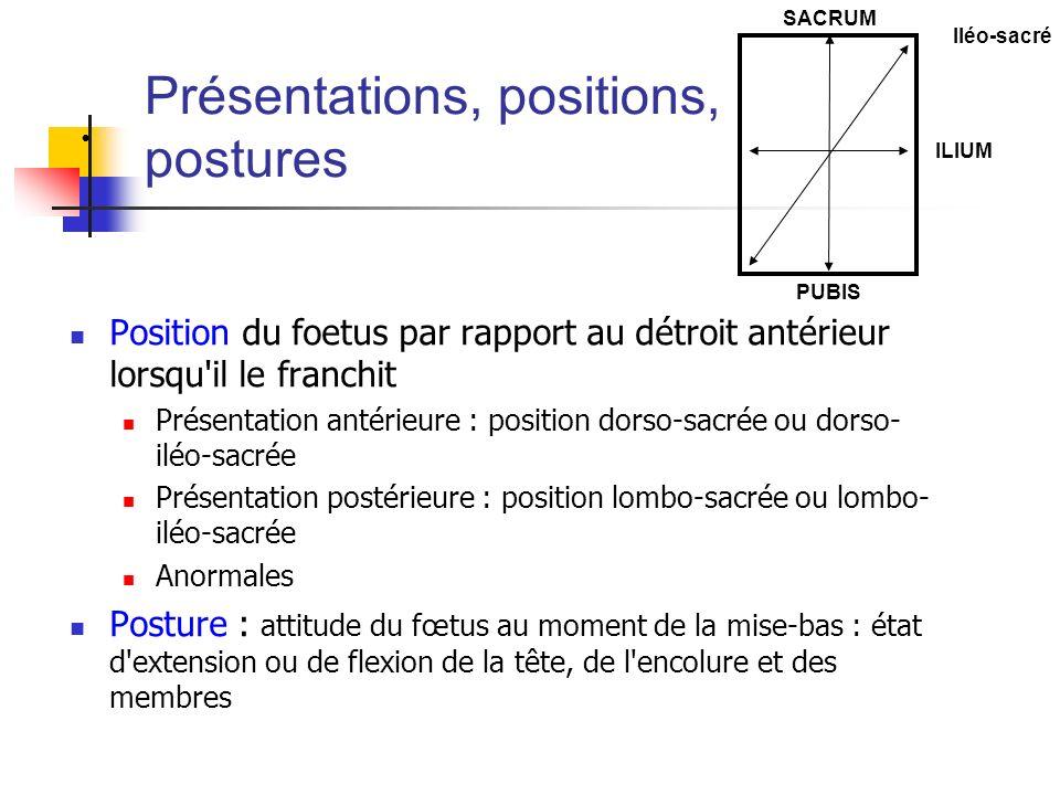 Présentations, positions, postures