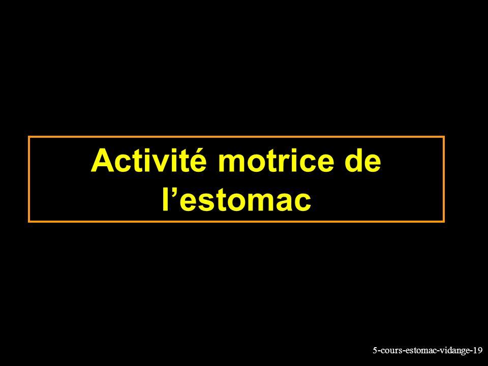 Activité motrice de l'estomac