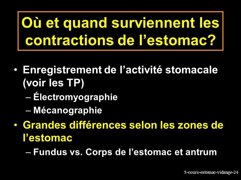 Où et quand surviennent les contractions de l'estomac
