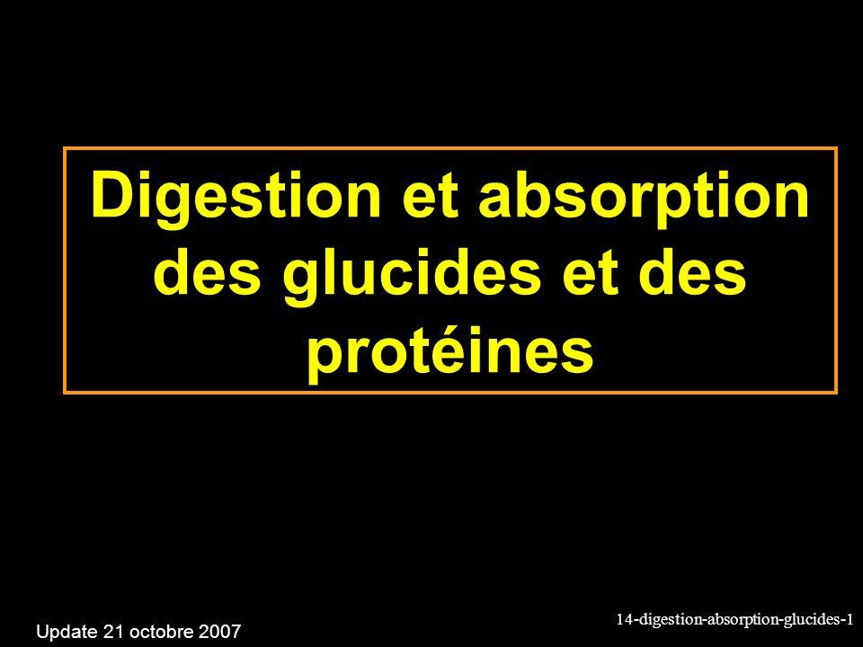 Digestion et absorption des glucides et des protéines
