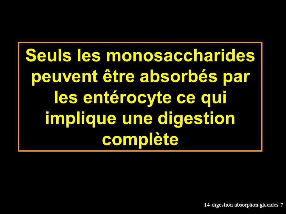 Seuls les monosaccharides peuvent être absorbés par les entérocyte ce qui implique une digestion complète