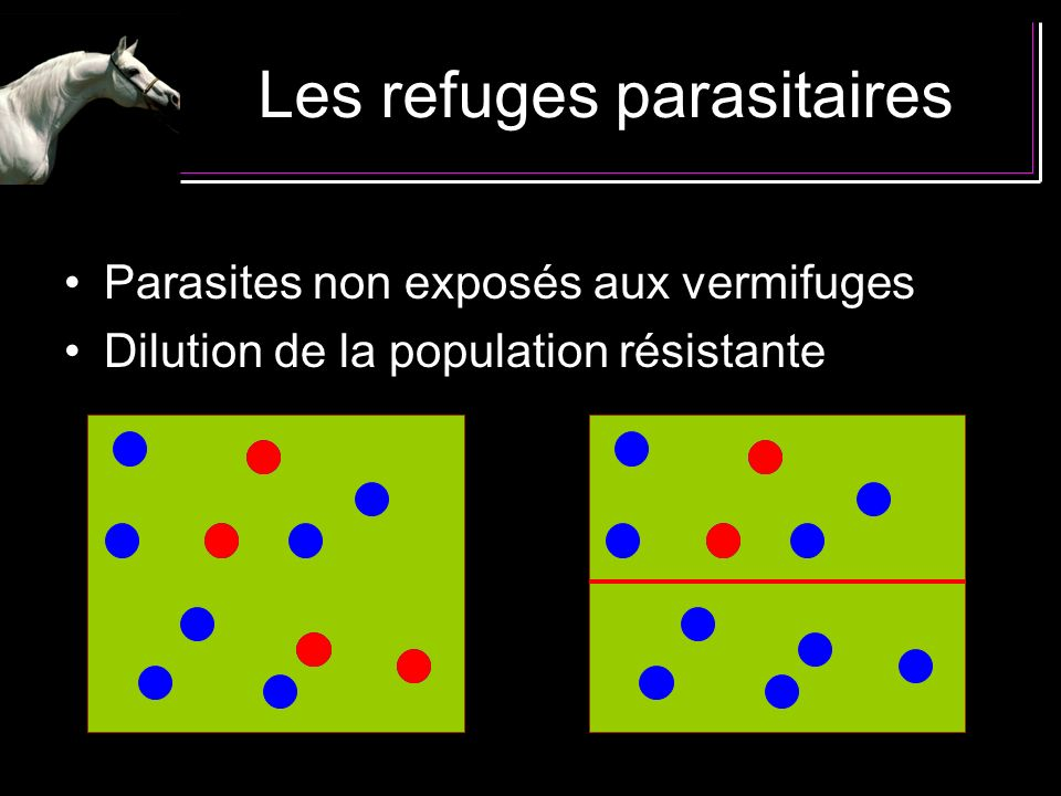 Les refuges parasitaires