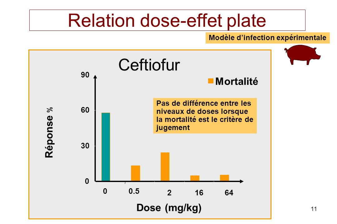 Relation dose-effet plate