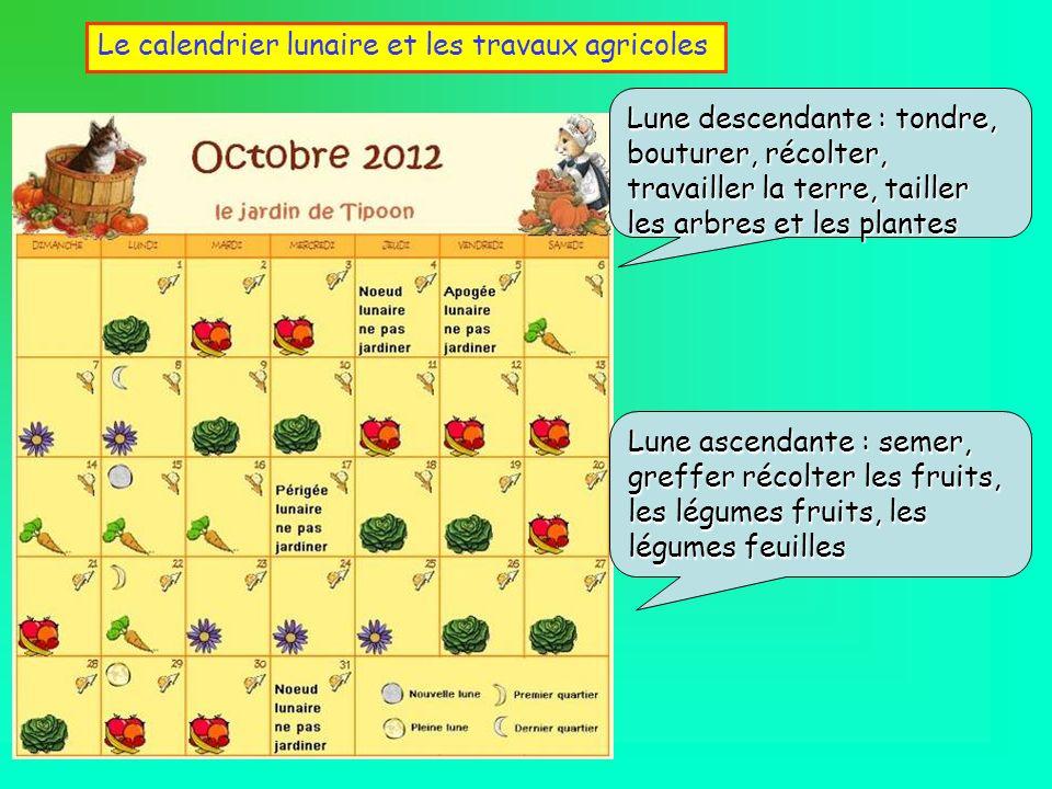 Le calendrier lunaire et les travaux agricoles