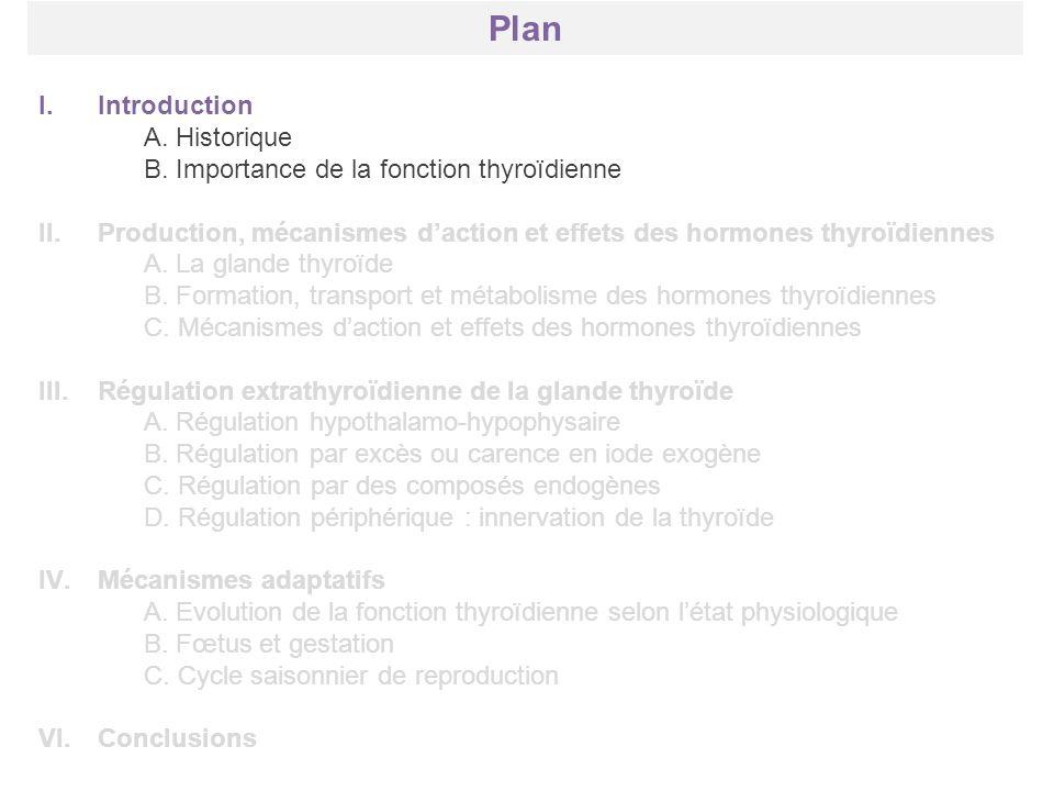 Plan Introduction A. Historique
