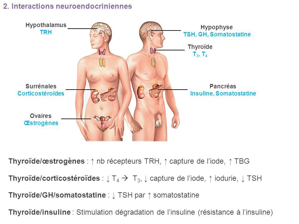 Insuline, Somatostatine