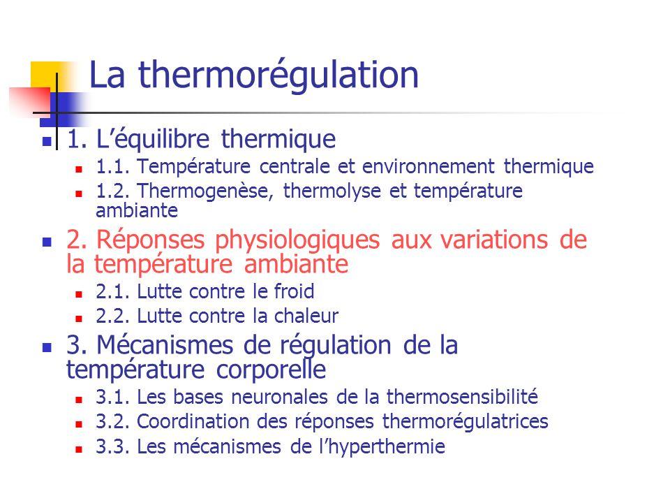 La thermorégulation 1. L'équilibre thermique