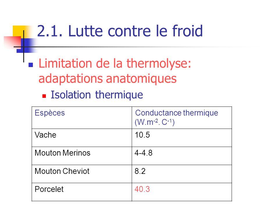 2.1. Lutte contre le froidLimitation de la thermolyse: adaptations anatomiques. Isolation thermique.