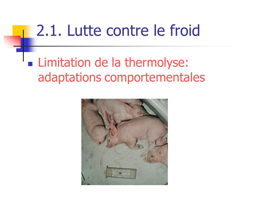 2.1. Lutte contre le froid Limitation de la thermolyse: adaptations comportementales