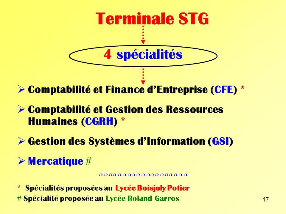 Terminale STG 4 spécialités