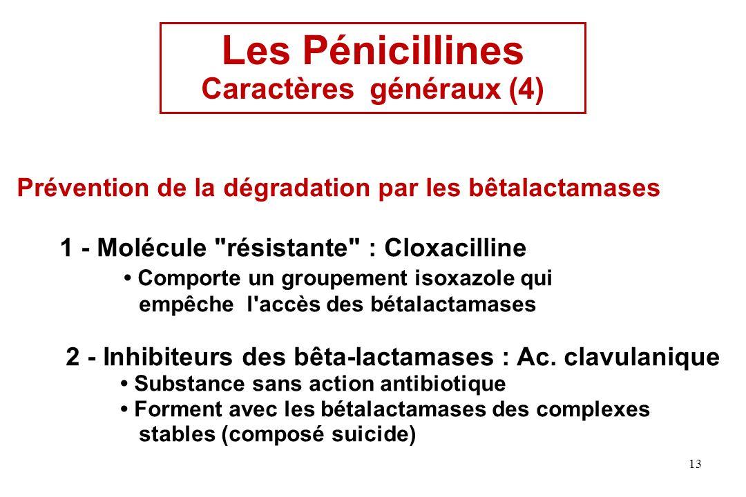 Caractères généraux (4)