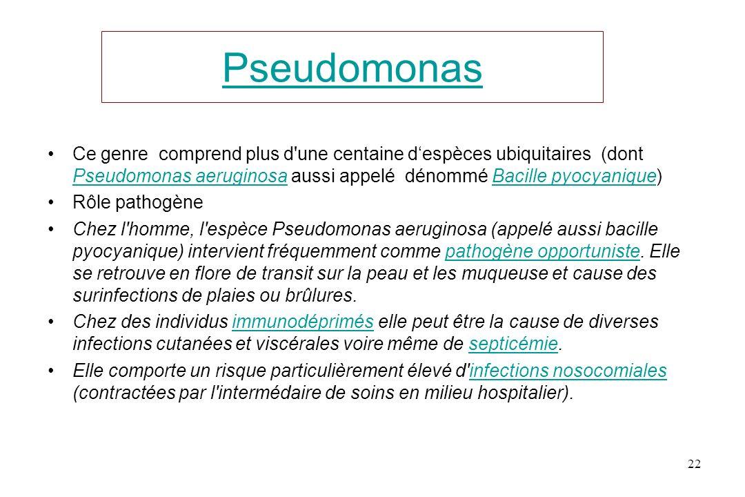 Pseudomonas Ce genre comprend plus d une centaine d'espèces ubiquitaires (dont Pseudomonas aeruginosa aussi appelé dénommé Bacille pyocyanique)
