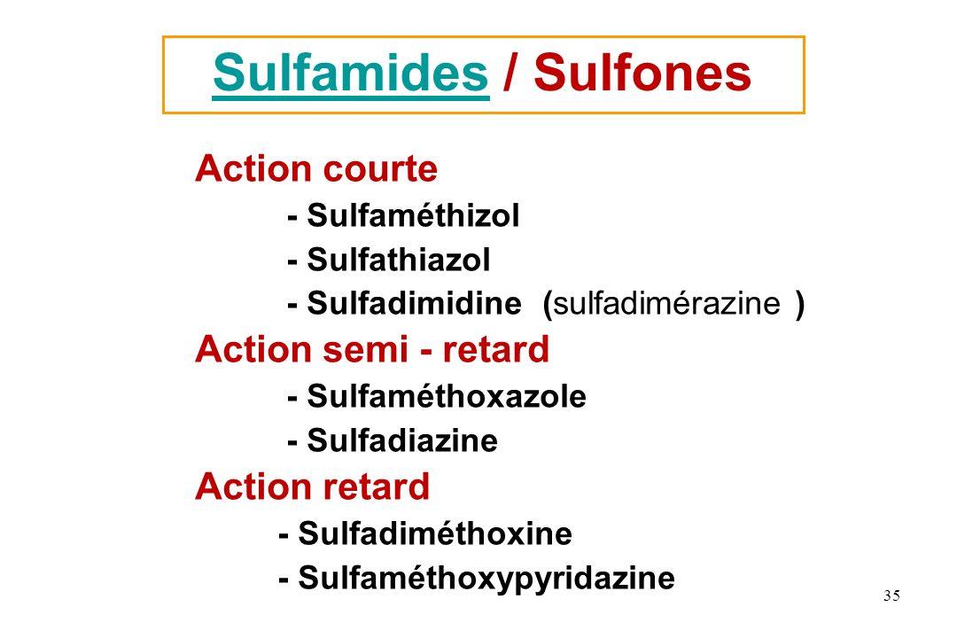 Sulfamides / Sulfones Action courte Action semi - retard Action retard