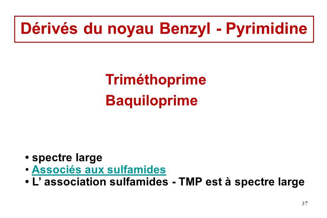 Dérivés du noyau Benzyl - Pyrimidine